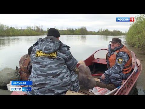«Всероссийский день без сетей» в Республике Коми
