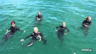 preview picture of video 'Cheerleaders Go Swimming With Dolphins In Akaroa New Zealand'