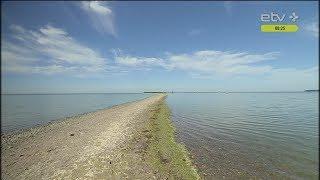 Балтийское море — самое грязное в мире?
