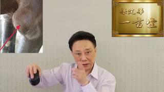 5串1 Win中晒,但???…2019-03-17 賽後分析【梁定華一言堂】