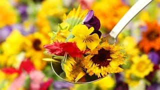 Edible Flowers - A Banquet Of Blooms