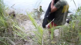 Ловля карпа в тверской области