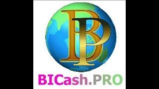 BiCash PRO маркетинг!
