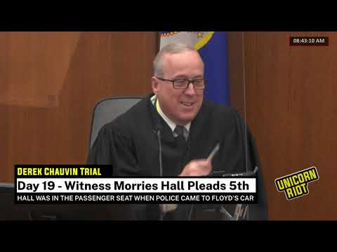 Chauvin Trial Day 19