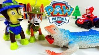 ЩЕНЯЧИЙ ПАТРУЛЬ в джунглях! Новая Серия Мультфильм для детей PAW Patrol