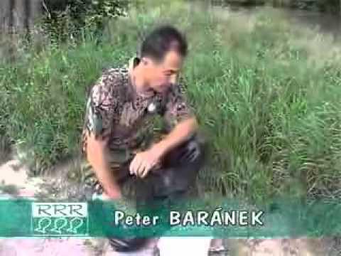 TV relácia RRR 2005-13 (25.06.2005)