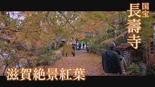 滋賀絶景紅葉2019 「国宝 長壽寺」