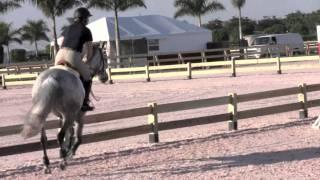 2011 George Morris Horsemastership