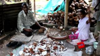 preview picture of video 'Cutting Copra (coconut meat) for the mill to make oil'