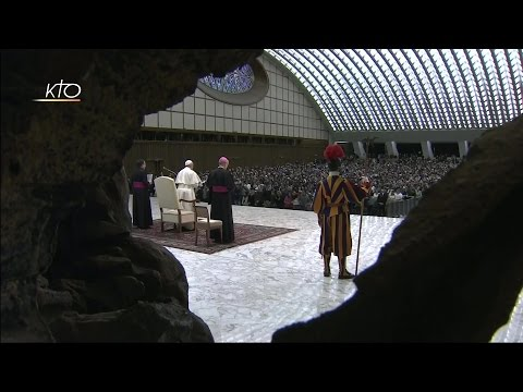 Audience générale du 11 janvier 2017
