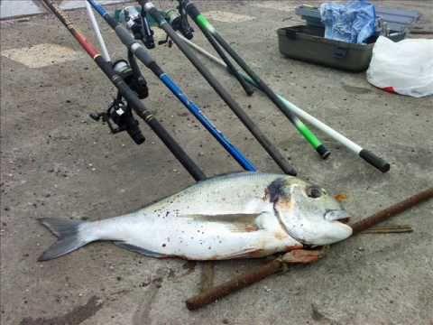 Comprare la semituta intera per pescare in Chelyabinsk