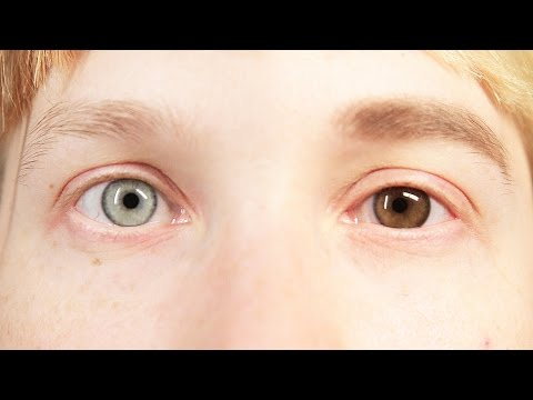 People Change Their Eye Color For A Week