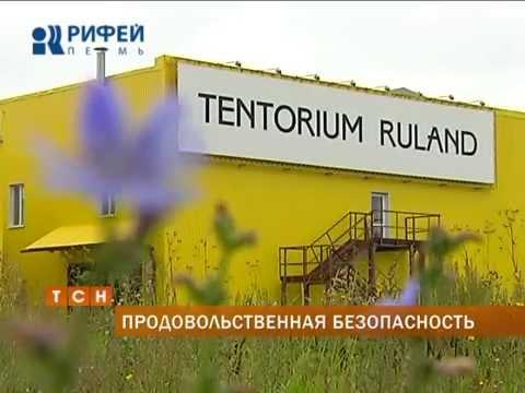 Губернатор посетил предприятие по переработке продуктов пчеловодства