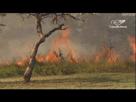 Brasil é o terceiro colocado em número de queimadas