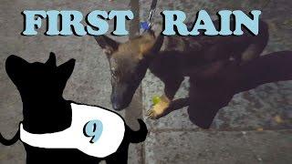 First Rain 2.0 E9