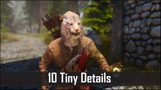 Skyrim: Yet Another 10 Tiny Details That You May Still Have Missed in The Elder Scrolls 5 (Part 25)