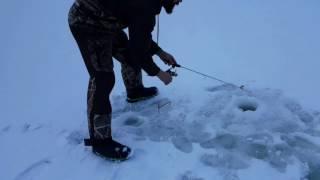 Lowrance elite-4x chirp ice machine