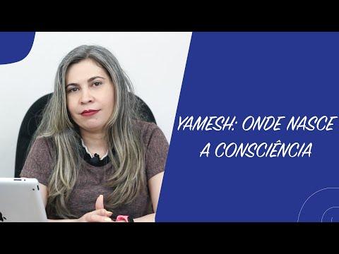 Livro Yamesh: Onde nasce a consciência   Joseane Santos