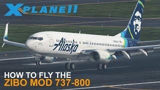 zibo 737-800 x plane 11 - 免费在线视频最佳电影电视节目 - Viveos Net
