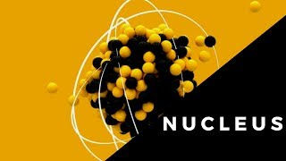 Nucleus and its parts ( nuclear membrane,  nucleoplasm, nucleolus)