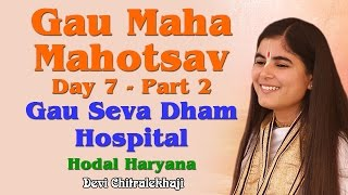 Gau Maha Mahotsav Day 7 - Part 2  Gau Seva Dham Hospital Hodal Haryana Devi Chitralekhaji