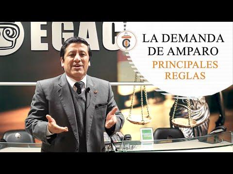 LA DEMANDA DE AMPARO: PRINCIPALES REGLAS - TC172