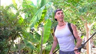 Growing 250 Fruit Trees In My Backyard Garden | My Secret!