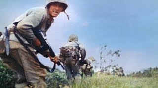 Battle of Okinawa - Mount Yae