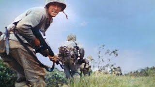Battle of Okinawa - Mount Yae