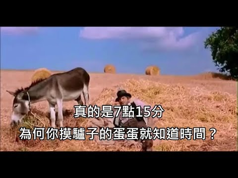 男子問義大利農夫現在幾點,農夫摸驢子蛋蛋就知道時間