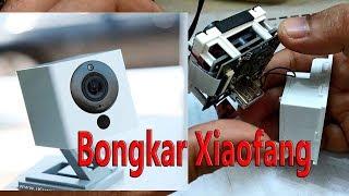 xiaofang 1s rtsp - Kênh video giải trí dành cho thiếu nhi - KidsClip Net