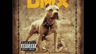 DmX-The Rain with Lyrics