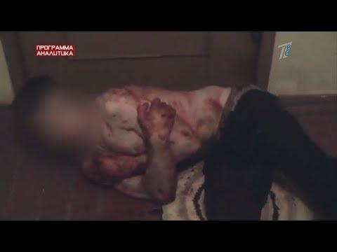 Реклама смерти: как в Казахстане продвигают наркотики