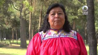 Entrevista - Tirza González Castillo