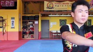 Tornado Kick - Wushu Kung Fu Tutorial - Xuanfeng Jiao - XFJ
