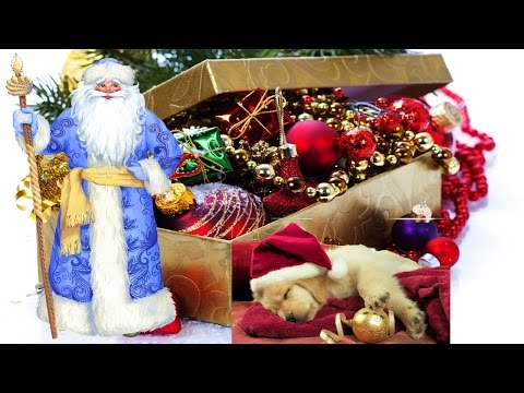 """Новогодняя сказка песня, сказка про щенка """"Сказочные сны"""" новогодние игрушки свечи и хлопушки"""