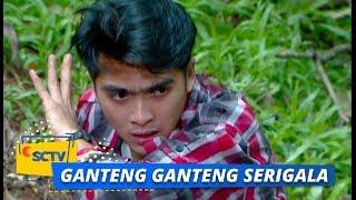 Highlight Ganteng-Ganteng Serigala - Episode 1