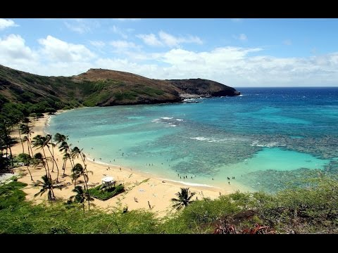 Video Top Tourist Attractions in Honolulu: Travel Guide Oahu, Hawaii