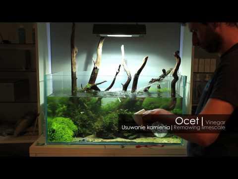 Pielęgnacja akwarium
