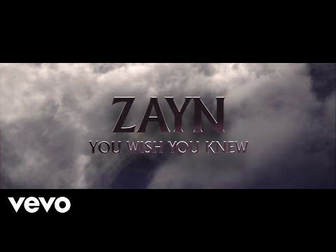 You Wish You Knew - Zayn