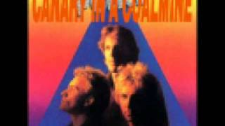 The Police   Canary In A Coalmine (zenyatta Mondatta).wmv