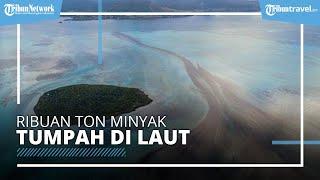 Kondisi Mengerikan Laut Mauritius Tercemar, Ribuan Ton Minyak Tumpah dari Kapal Tanker