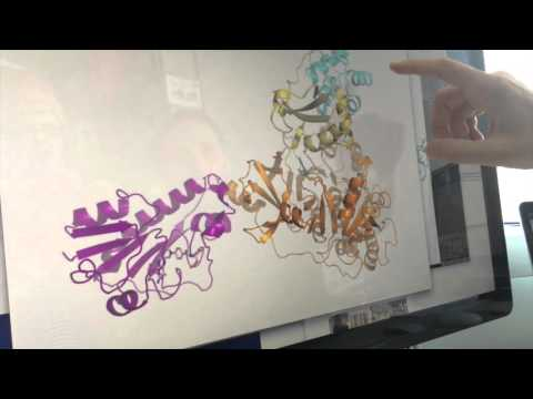 3D images of megaenzymes