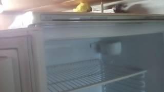 Ремонт холодильников продувка копелярки .