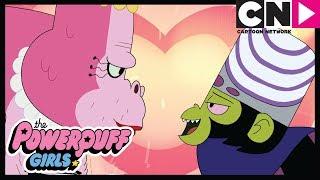 Суперкрошки | Обезьянья любовь | Cartoon Network