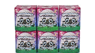 Hatchimals Season 4 Hatch Bright Blind Box Unboxing Toy Review