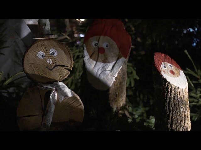 Revivez le lancement des illuminations de Noël !
