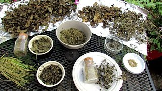 How To Harvest & Oven Dry Your Container Garden Herbs: Harvest, Drying & Fertilizing