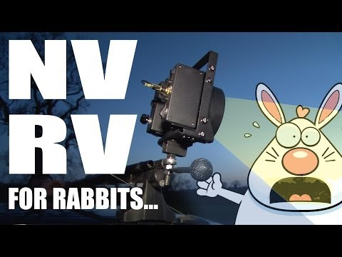 Rabbit-shooting with vehicle-mounted night-vision