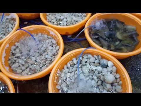 Seafood Đà Nẵng - Bé Mặn